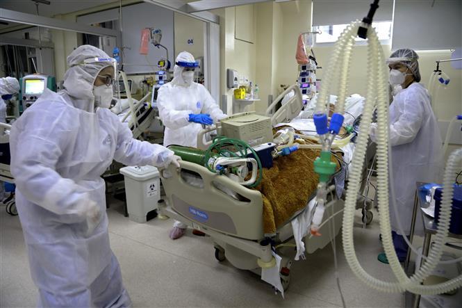Bệnh nhân COVID-19 được điều trị tại bệnh viện Santa Casa de Misericordia ở Porto Alegre, Brazil, ngày 13-8-2020. Ảnh: AFP/TTXVN