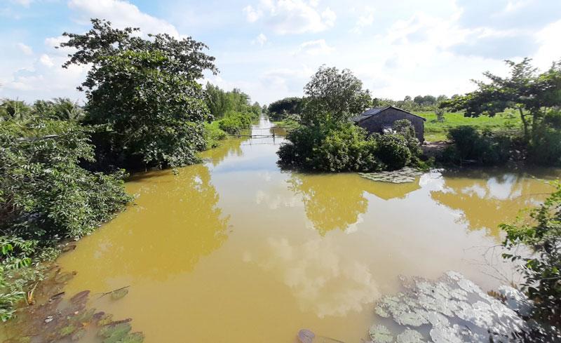 Một góc khu Lạc Địa ở xã Phú Lễ, huyện Ba Tri. Ảnh: Thanh Bạch