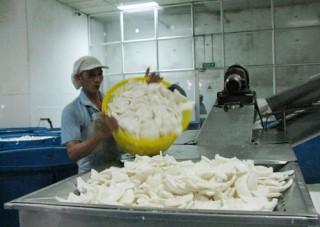 Doanh nghiệp xuất khẩu có uy tín năm 2011