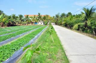 Bài học kinh nghiệm từ xã nông thôn mới Phú Nhuận