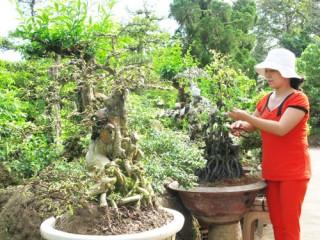 Sơn Định khai thác lợi thế kinh tế chủ lực