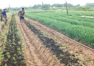 Tân Thủy sôi động phong trào xây dựng nông thôn mới