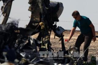 Nga thông báo kết quả sơ bộ giải mã hộp đen máy bay rơi tại Ai Cập