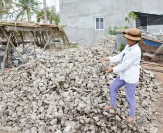 Hàu chết do mặn, thiệt hại hơn 45 tỷ đồng