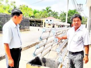 Rau thủy canh có thể giúp người dân thoát nghèo