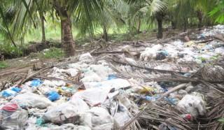 Cần giải quyết tình trạng ô nhiễm môi trường bãi rác từ chợ Minh Đức