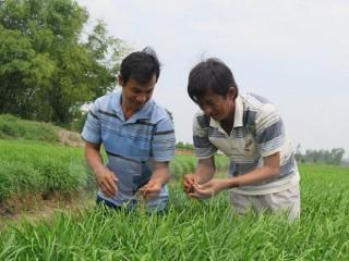 Việt Nam đăng cai Hội nghị Bộ trưởng hợp tác xã khu vực châu Á-TBD