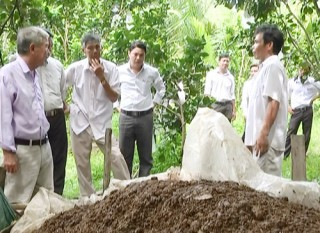 Sản xuất phân hữu cơ vi sinh từ chất thải chăn nuôi