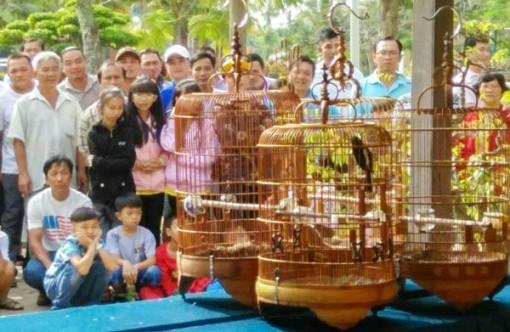 Hội thi đá chim cảnh nghệ thuật TP. Bến Tre