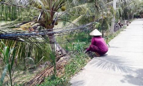 Ấp Thạnh Hưng B, xã Mỹ Hưng: Đường dây điện Tổ 22 chằng chịt, dễ xảy ra tai nạn
