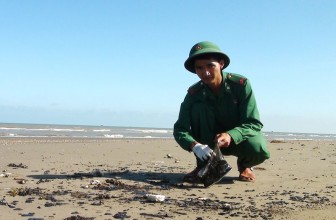 Bình Đại phát hiện vệt dầu loang trên biển