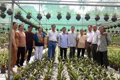 Tập hợp nông dân sản xuất giỏi, thu nhập cao
