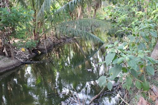 Người dân ấp Bình Thới: Mong sớm có đường thoát nước