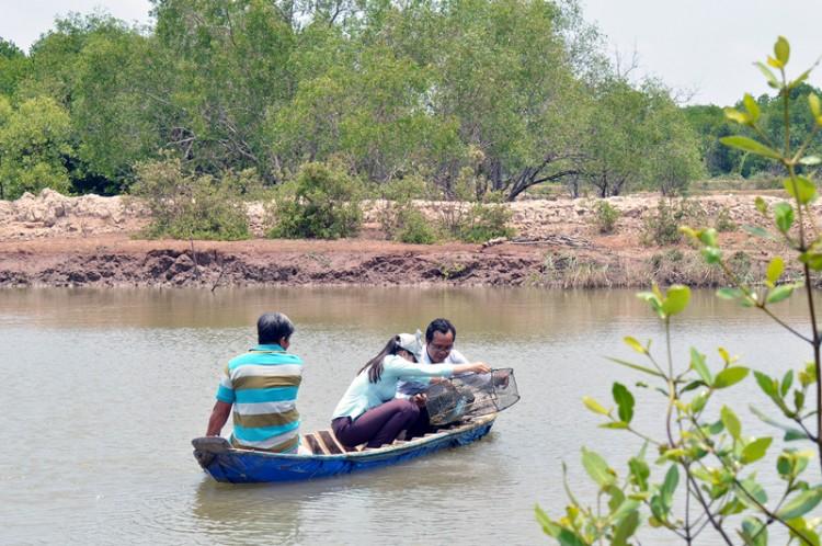 Thạnh Phong phát triển nông nghiệp sạch gắn du lịch sinh thái cộng đồng