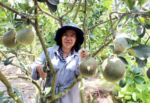 Cô giáo Mảnh nhiệt tình đóng góp xây dựng đường nông thôn