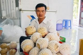 Ấn tượng dừa dứa nướng Ba Đốt