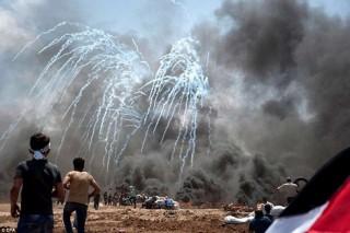 Chủ tịch nước gửi điện chia buồn đến Tổng thống Palestine