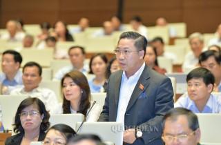 Đại biểu Quốc hội đơn vị tỉnh góp ý Luật Đơn vị hành chính kinh tế đặc biệt và dự thảo Luật Trồng trọt