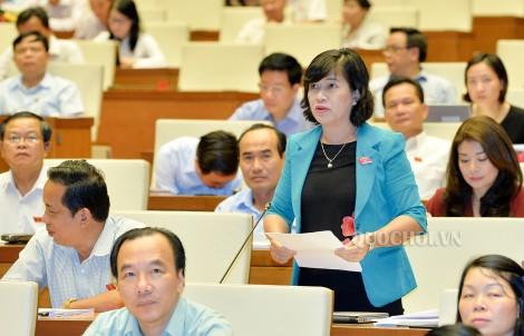 Đại biểu Quốc hội đơn vị tỉnh Bến Tre góp ý Luật Tố cáo (sửa đổi)