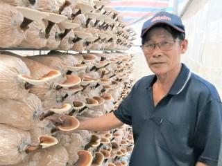 Quyết liệt hơn cho Đồng khởi khởi nghiệp