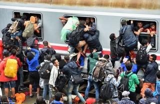 Hungary hình sự hóa hành vi hỗ trợ người nhập cư