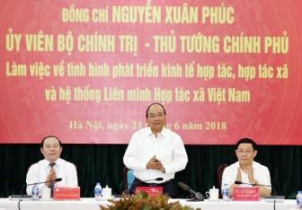 Thủ tướng: Chính phủ sẽ ban hành một số chính sách mới hỗ trợ HTX