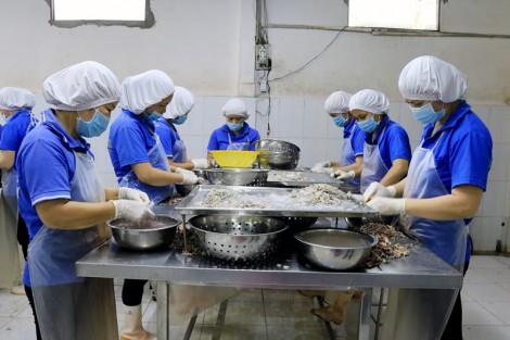 Giải quyết lao động nông thôn qua mô hình tách vỏ tôm biển