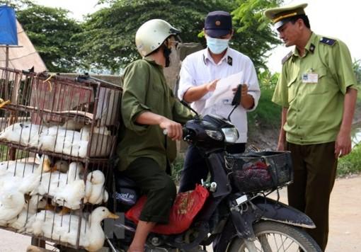 Ban hành quy định kiểm dịch y tế đối với nhiều hàng hóa