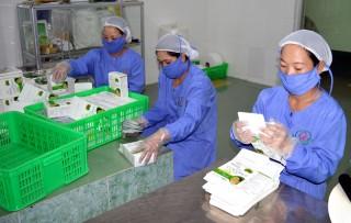 Đa dạng hóa các sản phẩm từ dừa