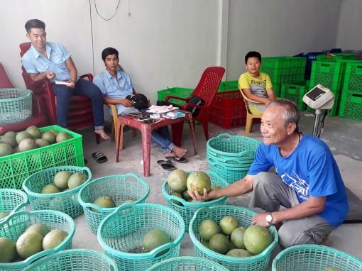 Đổi mới tư duy trong sản xuất nông nghiệp