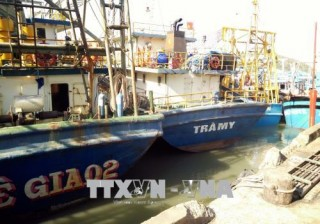 Khắc phục tình trạng tàu cá đóng mới theo Nghị định 67 nằm bờ