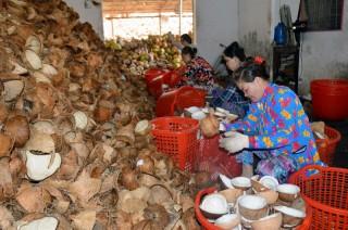 Phát triển hợp tác xã giúp kinh tế nông nghiệp khởi sắc
