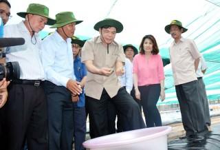 Bộ trưởng Nguyễn Xuân Cường khảo sát chuỗi giá trị cây dừa và con tôm Bến Tre