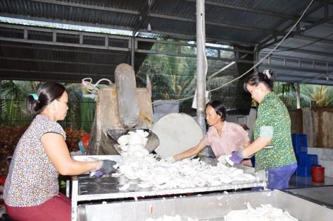 Khảo sát việc xây dựng chuỗi giá trị ở Mỏ Cày Nam