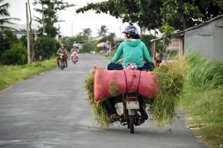 Nhiều vụ tai nạn giao thông do tránh vượt không đúng quy định