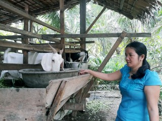 Hội Liên hiệp Phụ nữ xã Lương Quới: Hỗ trợ hội viên thoát nghèo từ con dê
