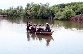Du lịch sinh thái rừng nước mặn thu hút khách