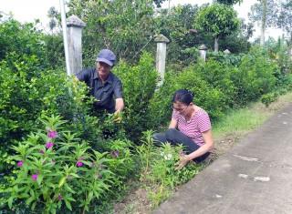 Tổ nhân dân tự quản số 12, ấp Sơn Long, xã Sơn Định: Quan tâm chăm lo từ những điều thiết thực