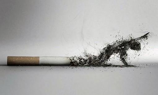 Hút thuốc lá khiến hàng triệu người chết vì bệnh tim mạch