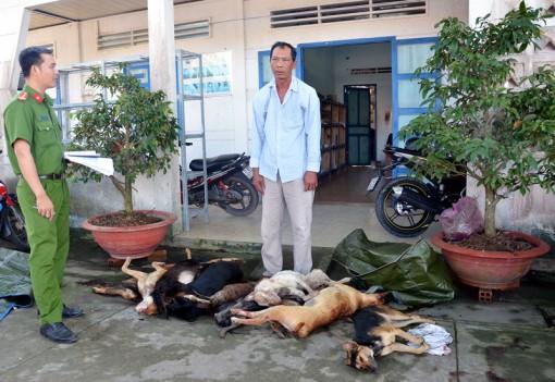Bắt đối tượng vận chuyển trên 154kg chó không rõ nguồn gốc
