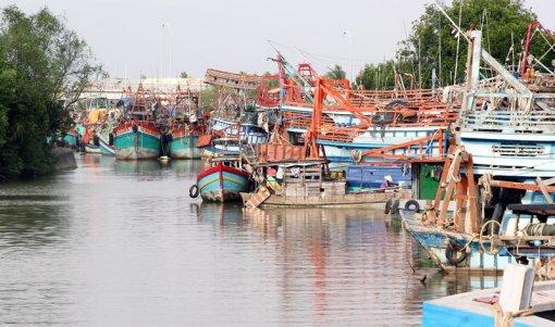 Phát huy tốt lợi thế, tiềm năng kinh tế 3 huyện biển