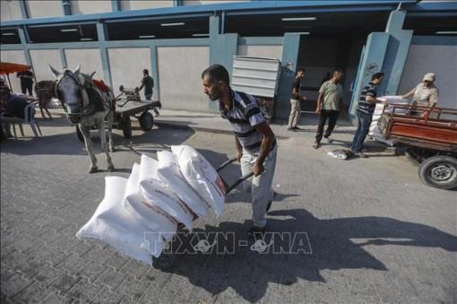 Canada tăng cường viện trợ cho cơ quan Liên hợp quốc cứu trợ người Palestine