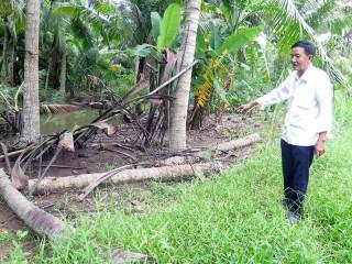 Xã Phước Hiệp, huyện Mỏ Cày Nam: Xây dựng giao thông nông thôn từ khó thành dễ