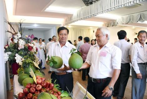 Hợp tác xã nông nghiệp Phú Túc: Nhiều dấu ấn nổi bật trong phát triển hợp tác xã tỉnh