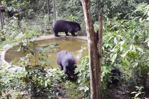 Đến với vườn quốc gia Cát Tiên