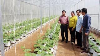 Hội Cựu chiến binh Việt Nam kiểm tra chương trình xây dựng nông thôn mới