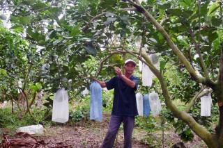 Hỗ trợ nông dân thích ứng với biến đổi khí hậu