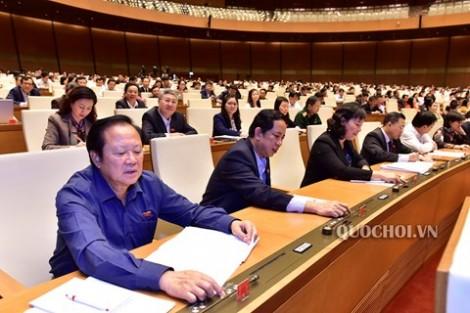 Đoàn đại biểu Quốc hội tỉnh Bến Tre tích cực hoạt động tại Kỳ họp thứ 6, Quốc hội khóa XIV