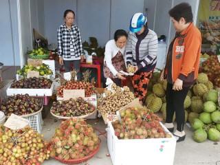Chợ Lách: Dồn sức cho xây dựng nông thôn mới