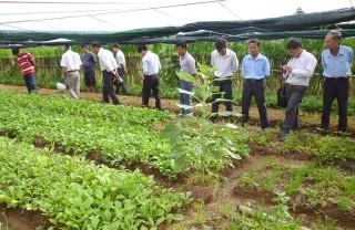 Tập huấn thanh tra nông nghiệp hữu cơ năm 2019